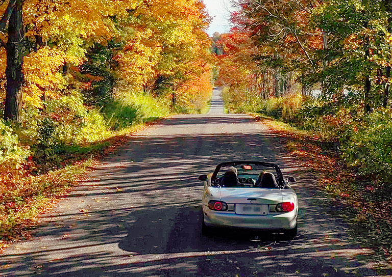 15 Best Fall Road Trips
